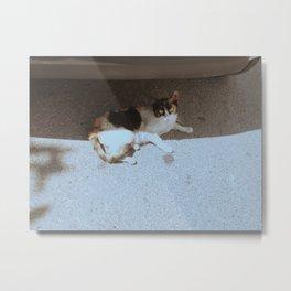 Tunisia04 Metal Print