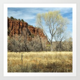 Red Rock State Park Meadow Art Print