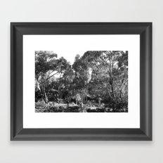 Natural Chaos  Framed Art Print