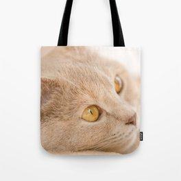 Dreaming cat Tote Bag