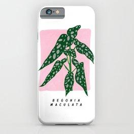 Begonia Maculata iPhone Case