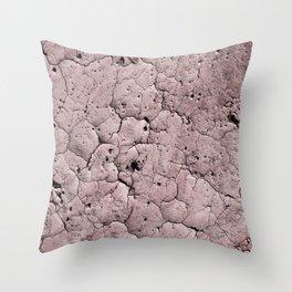 Cracked Earth Blush Throw Pillow