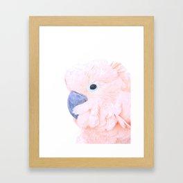 Pink Cockatoo Portrait Framed Art Print