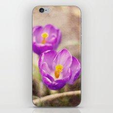 PURPLE SPRING iPhone & iPod Skin