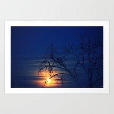 Penumbral Lunar Rising Art Print