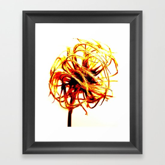 Abstract Seed Head Framed Art Print