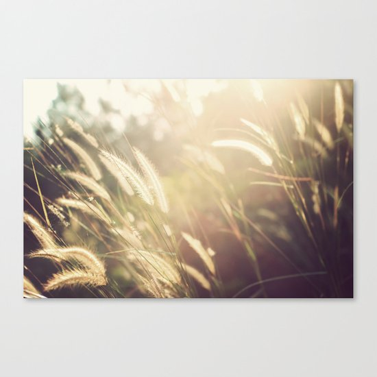 Day Out Canvas Print