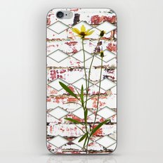 Must See Inside iPhone & iPod Skin