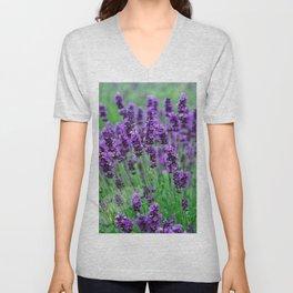 Lavender colors... Unisex V-Neck