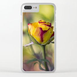 Bright cheeerful rose Clear iPhone Case