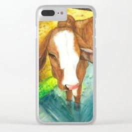 Calf cooling off in a trough Clear iPhone Case