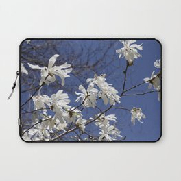 Star filled sky (Star Magnolia flowers!)      Edit Laptop Sleeve