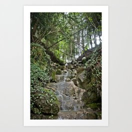 Nature 21 Art Print