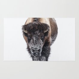 Yellowstone National Park: Lone Bull Bison Rug