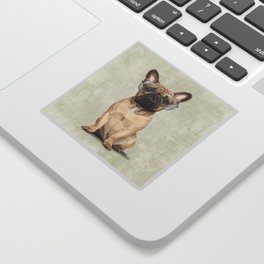 Mr French Bulldog Sticker