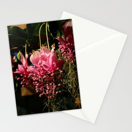 Medinilla Magnifica Stationery Cards
