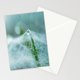 A large spider web on the ground Stationery Cards