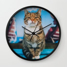 Suspicious cat Wall Clock