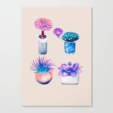 Succulents Cactus pattern Canvas Print