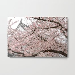 Cherry Blossoms in Osaka Metal Print