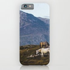 Connemara  - Horse and Mountains iPhone 6s Slim Case