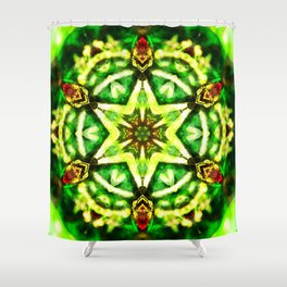 Twelve Around the One Redux - The Mandala Collection Shower Curtain
