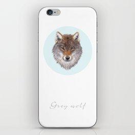 Grey wolf portrait iPhone Skin