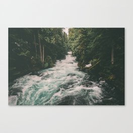 Mckenzie River Canvas Print
