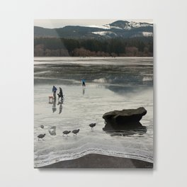 Frozen Lake Edge Metal Print