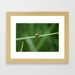 The Long March to Freedom Framed Art Print