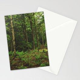 Pathfinder II Stationery Cards