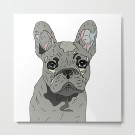 Frenchie Bulldog Puppy Metal Print