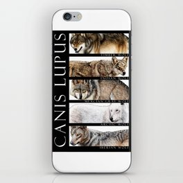 Wolves of the World iPhone Skin