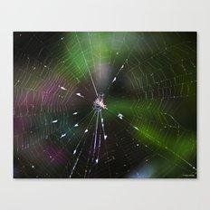 Come Into My Web Canvas Print