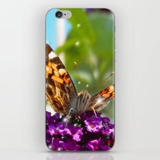 Small Butterfly with Bubbles  iPhone & iPod Skin