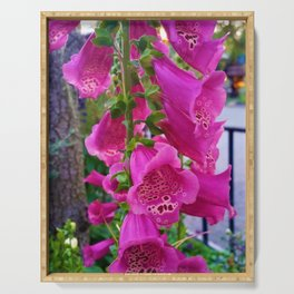 Lovely Pink Flowers 1 Serving Tray