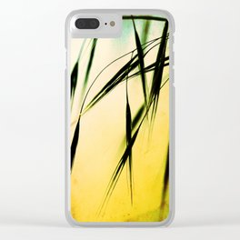 Grass in the light Clear iPhone Case