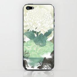 Celadon iPhone Skin