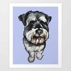 Barney the Miniature Schnauzer Art Print