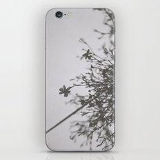 small blooms iPhone & iPod Skin