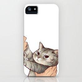 cat : hmmmmm! iPhone Case