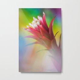 Rainbow Bromeliad Jasper Metal Print