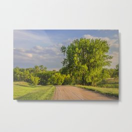 County Road, North Dakota 12 Metal Print