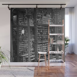 A book lovers dream - Cast-iron Book Alcoves Cincinnati Library black and white photography Wall Mural
