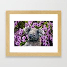 Koala and Orchids Framed Art Print