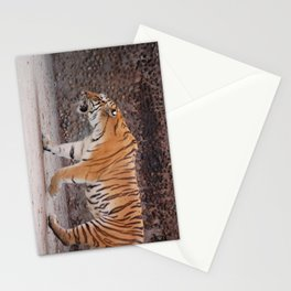 Tiger on the Prowl Stationery Cards