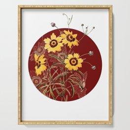 Vintage Coreopsis Elegans Botanical Illustration on Circle Serving Tray