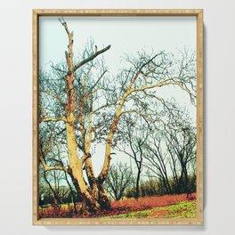 Lightning Tree Serving Tray
