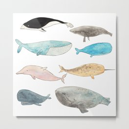 Group of whales Metal Print