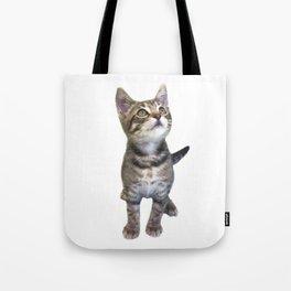 Tabby Kitten Tote Bag